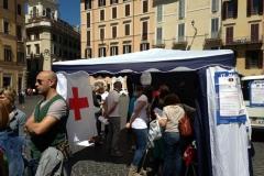 GMI 2014. Roma Piazza di Spagna