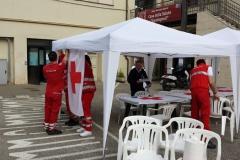GMI 2015 Arezzo