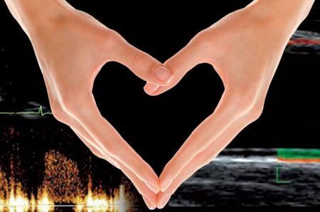 Il danno d'organo cardiovascolare: novità e conferme