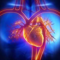 Raccomandazioni. Misurazione della pressione arteriosa al domicilio
