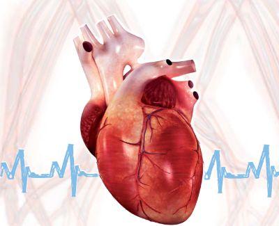 XV Corso di Perfezionamento Clinico sull'Ipertensione Arteriosa